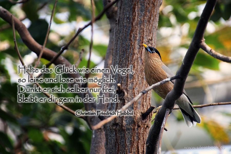 Zitat 0065 Christian Friedrich Hebbel