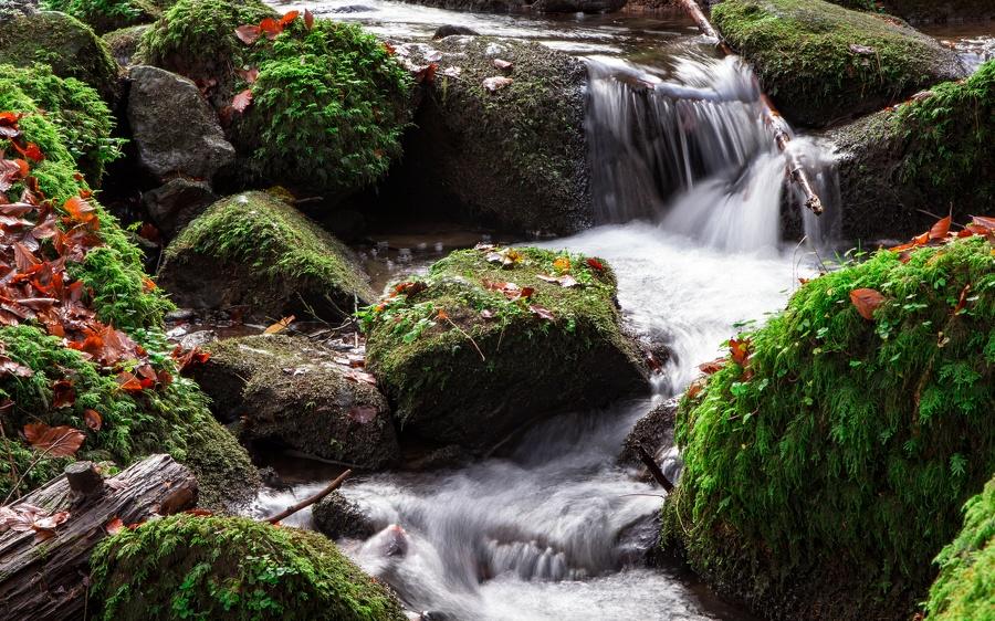 MG 4178_Wasserlauf im Silberbachtal
