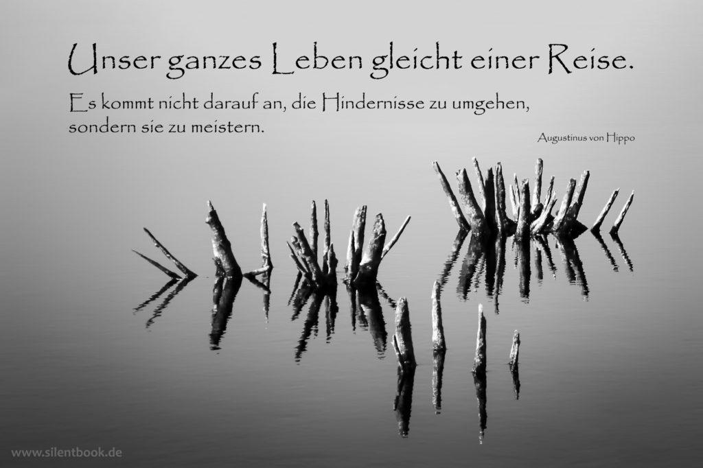 Spruch-Zitat_0104