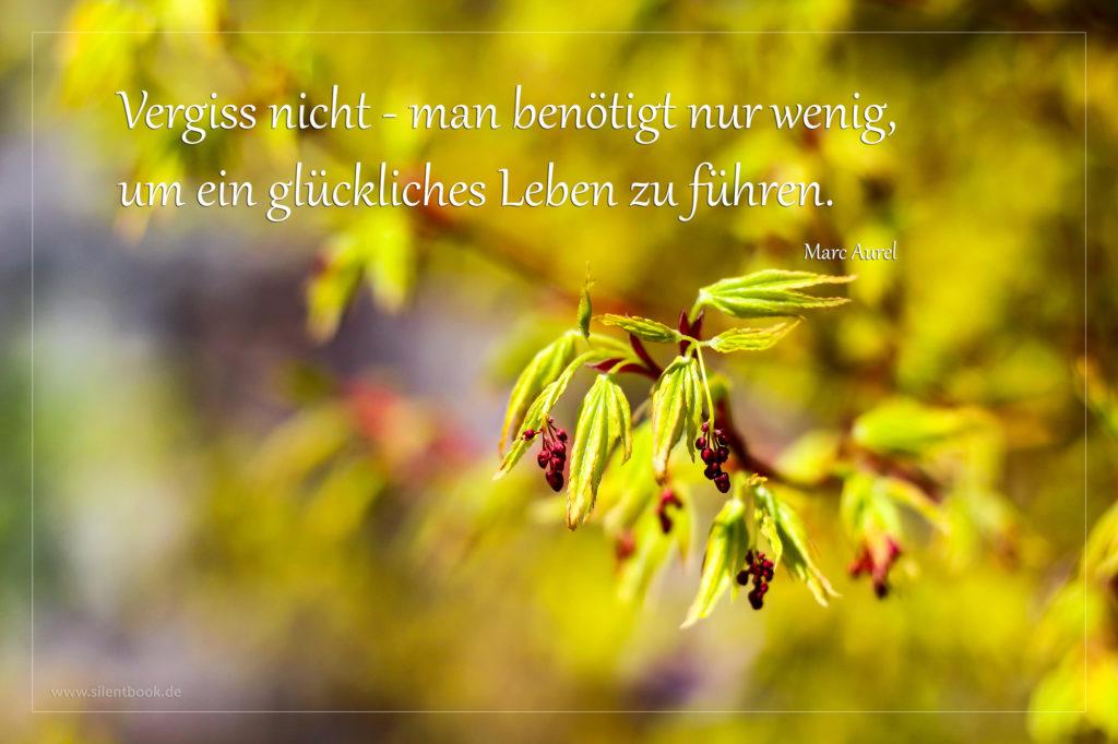 Spruch-Zitat_0106