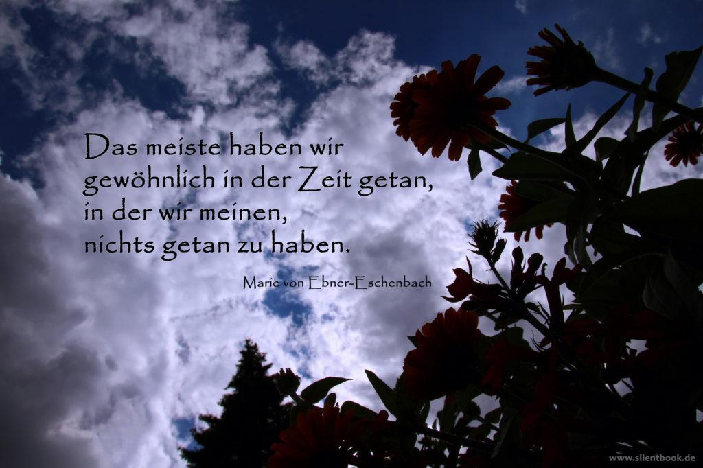 Spruch_0080_MarieVonEbner-Eschenbach