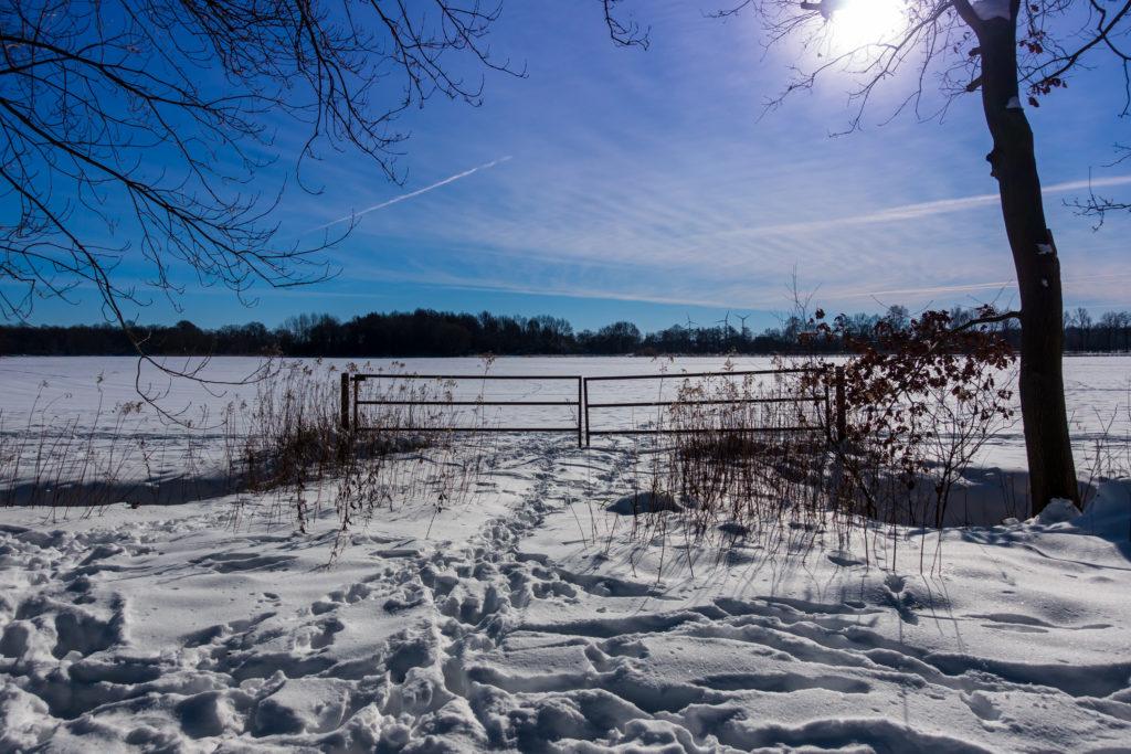 Rietberg-Winter-Impressionen-01807