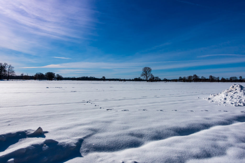 Rietberg-Winter-Impressionen-01856