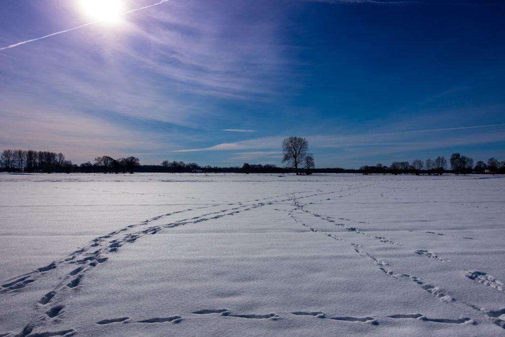 Rietberg-Winter-Impressionen-01858