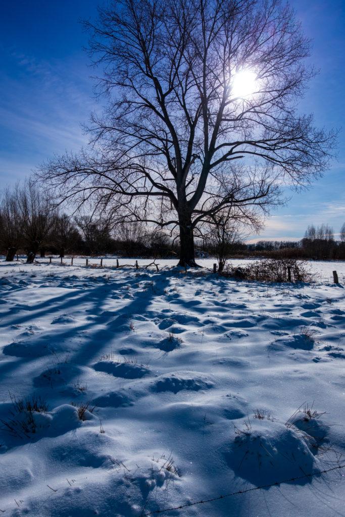 Rietberg-Winter-Impressionen-01879