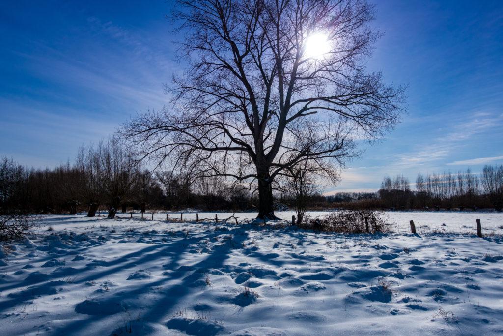 Rietberg-Winter-Impressionen-01881